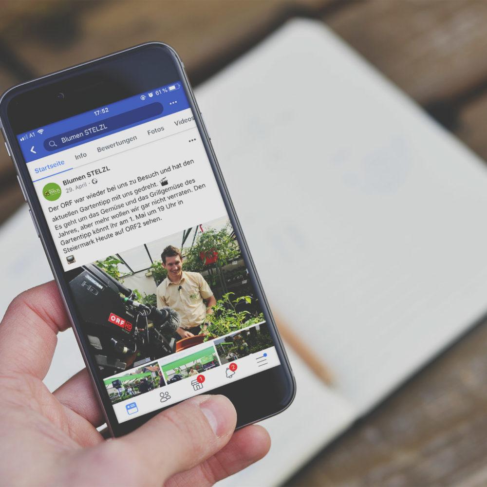 Facebook Betreuung und Facebook Übernahme Leibnitz Blumen Stelzl